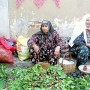 Herbs from Tire Vegetable Bazaar in Izmir